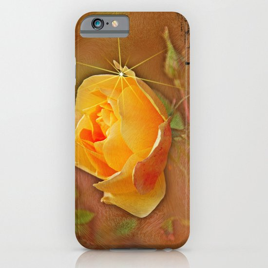 Peach rose iPhone & iPod Case