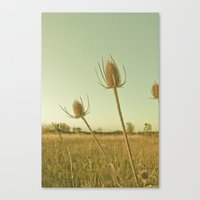 WEEDS Canvas Print