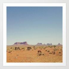 Grazing The Desert Art Print