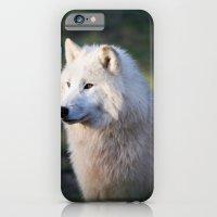 Canus Lupus Arctos II iPhone 6 Slim Case