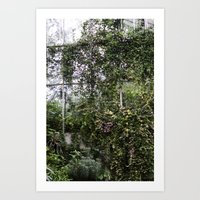 Royal Botanic Gardens Art Print