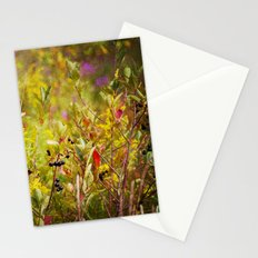Fall Field Stationery Cards