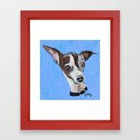 Mia the Italian Greyhound Framed Art Print