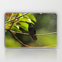 Hummingbird on a branch Laptop & iPad Skin