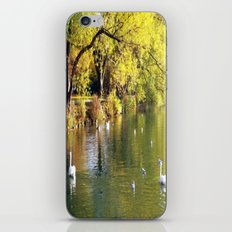 Autumn Mood at Lake iPhone & iPod Skin