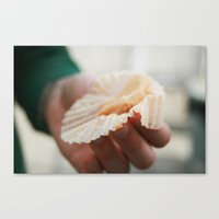 More, Please | Hunger Strikes Canvas Print