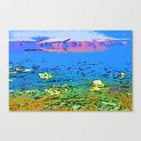 Coral Bay Dreams Canvas Print