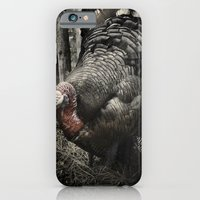 iPhone & iPod Case featuring Tom Feiler Turkey by Tom Feiler