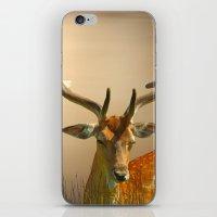 Golden Fallow iPhone & iPod Skin