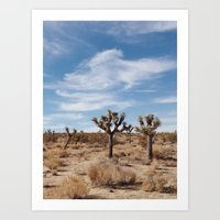 Joshua Tree National Par… Art Print