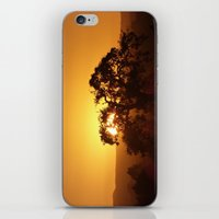 Napa Valley  iPhone & iPod Skin
