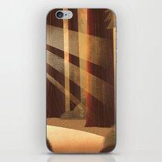 Redwoods iPhone & iPod Skin
