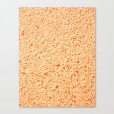 Sponge Surface Canvas Print