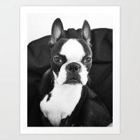 Lulo's Evil Look. Art Print