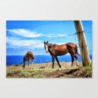Horses Against A Blue Sk… Canvas Print
