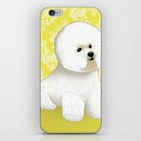 Bichon Frise iPhone & iPod Skin