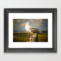 Seagull On A Fence Framed Art Print