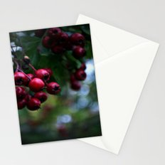 Pyracantha Stationery Cards
