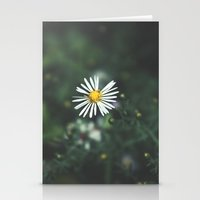Summertime Memories Stationery Cards