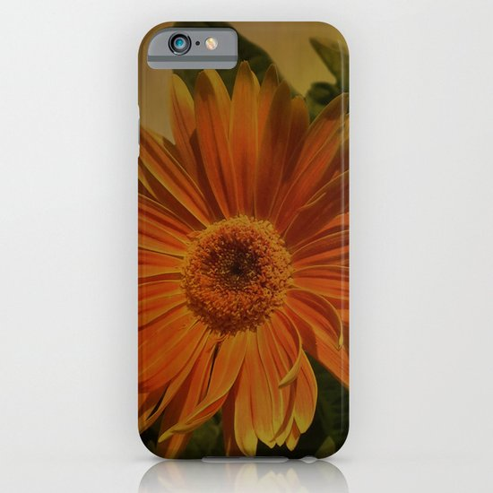 The Beauty Of Nature iPhone & iPod Case