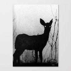 Whitetail - Fawn Canvas Print