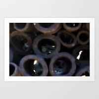 Coral Garbage Art Print