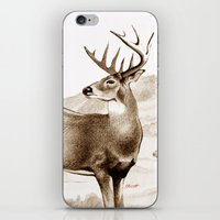 White-tailed Stag Sniffing the Air iPhone & iPod Skin