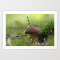 Mushroom Time In The For… Art Print