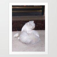 El matador gato Art Print