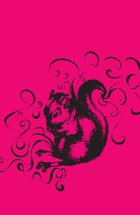 Squirrel Color Art Print