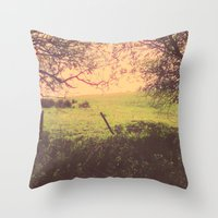 Hypnotic Fields  Throw Pillow