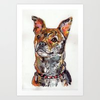Sweet Mixed Breed Pup Art Print