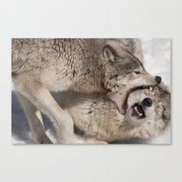 Acupuncture - Timber Wol… Canvas Print