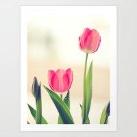 Love Tulips. Art Print