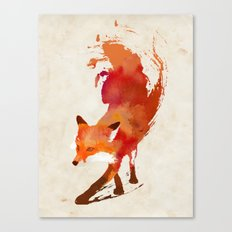Vulpes vulpes Canvas Print