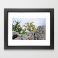 A yellow small tree Framed Art Print