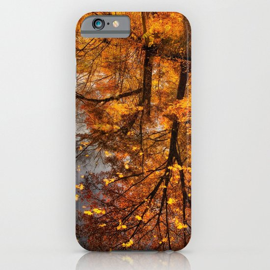 Fall Reflection iPhone & iPod Case
