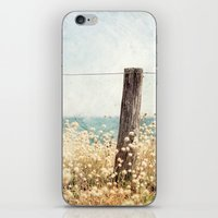Houat #8 iPhone & iPod Skin