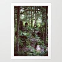 Vancouver Island Rainforest Art Print