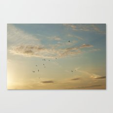 In Flight #7 Canvas Print