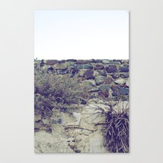 Untitled Wall Canvas Print
