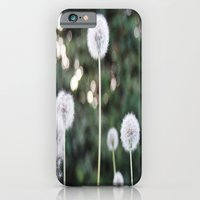iPhone & iPod Case featuring Dandelions by Natalie Guardado