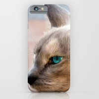 A Siamese Cat study iPhone 6 Slim Case