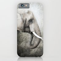iPhone & iPod Case featuring The old elephant by Pauline Fowler ( Polly470 )