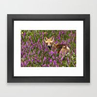Tip Toe Through the Fireweed Framed Art Print