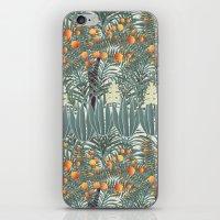 orange tree iPhone & iPod Skin