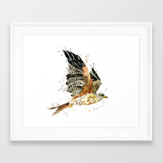 Red Kite Framed Art Print