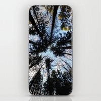Looking up the Sky iPhone & iPod Skin