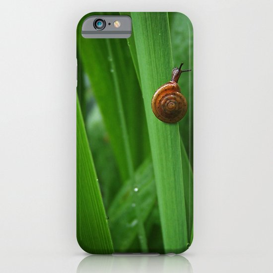 Daring Snail iPhone & iPod Case