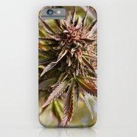 Sour Grape. iPhone 6 Slim Case